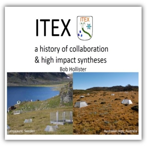 ITEX synthesis History